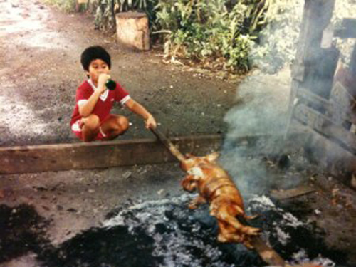 a child drinks from a soda bottle while roasting a whole suckling pig over a spit fire