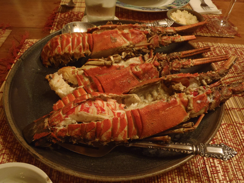 steamed lobster cracked open on a plate