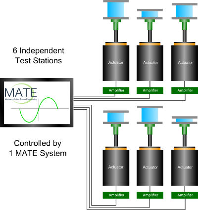Fig.2:  The    MATE   houses 6 individual test stations, each of which is independently controlled by its own amplifier, actuator, and sensor.