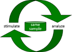 Fig 2: Stimulation and analysis of the same sample.
