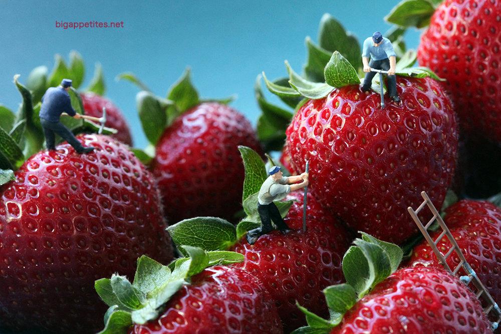 Strawberry Seed Poachers (2011) © Christopher Boffoli/ Big Appetites Studio