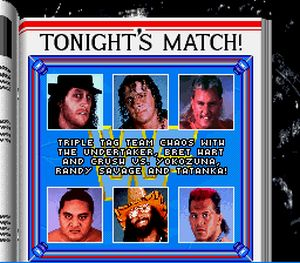 3 - WWF Royal Rumble (Sculptured Software/LJN, 1993)