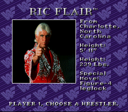 flair - WWF Royal Rumble (Sculptured Software/LJN, 1993)