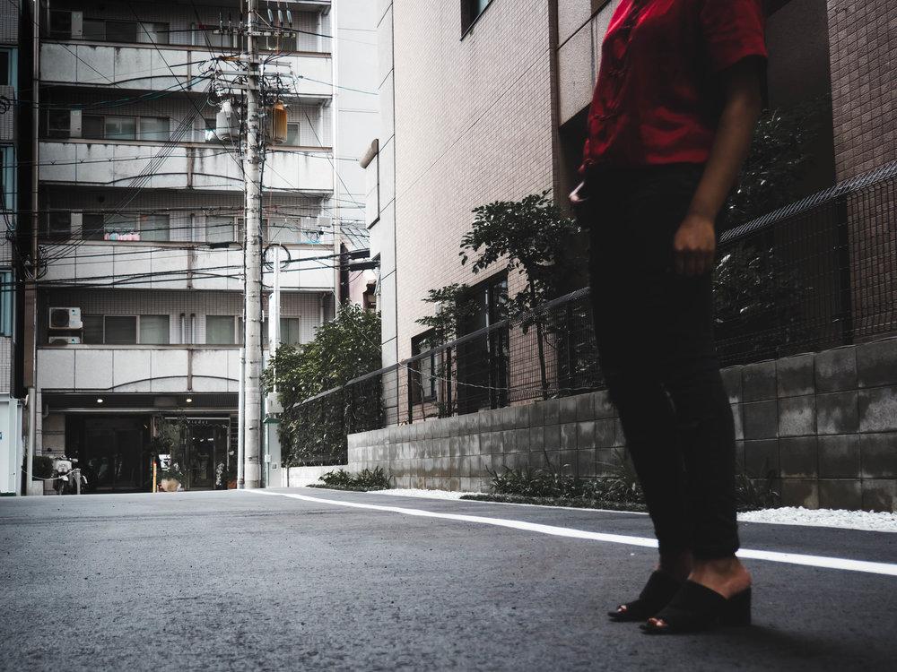 Kyoto Red 3.jpg