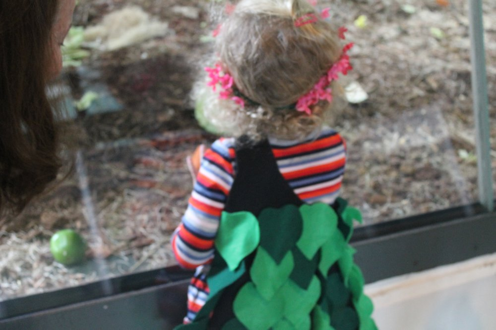We loved seeing LEAPers imagine themselves as gorillas, bears, trees and so much more at the dress up station