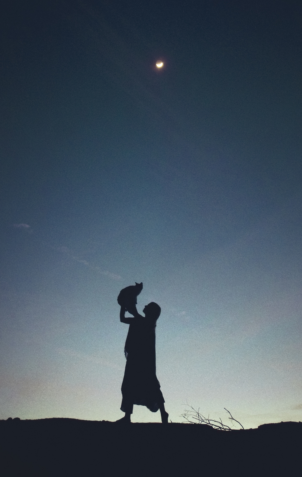Untitled (Crescent Moon Cat).jpg