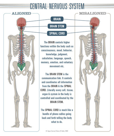 What Is A Neurostructural Correction