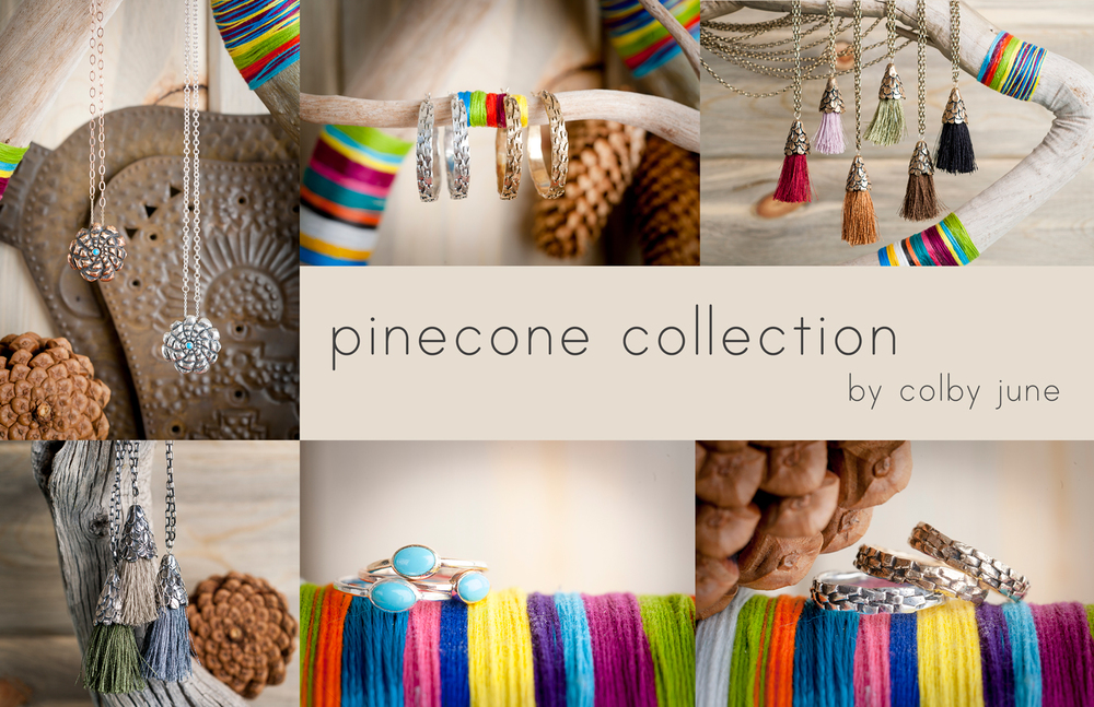 pineconecollection.jpg
