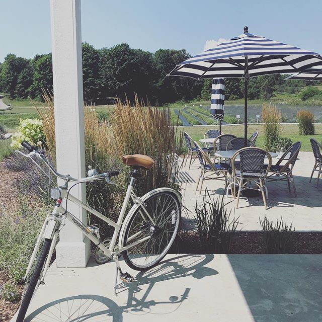 Back from a little family vacation in northern Michigan! Ruthies first plane ride, lots of sight seeing and lake time. We really enjoyed this lavender farm near traverse city, they even had lavender ice cream and lavender lemonade! Soooo yummy! . #vintagebike #lavender  #lavenderfarm #secretgarden #vacation