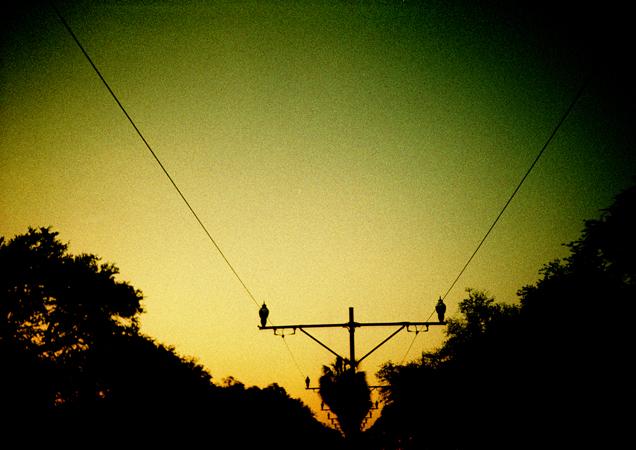 nola.lomo2012.03_0056.jpg