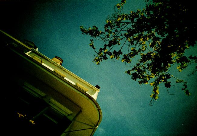 nola.lomo2012.03_0057.jpg