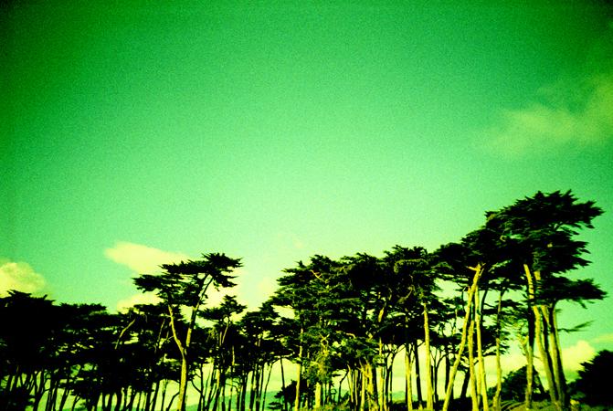 sf.lomo2011_0007.jpg