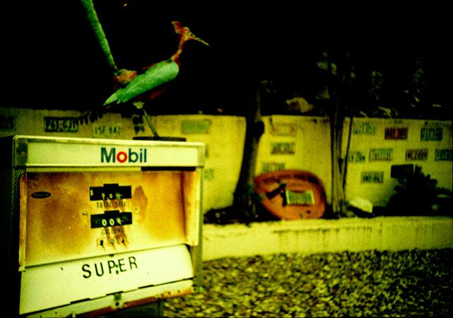 road.lomo2011_0170.jpg