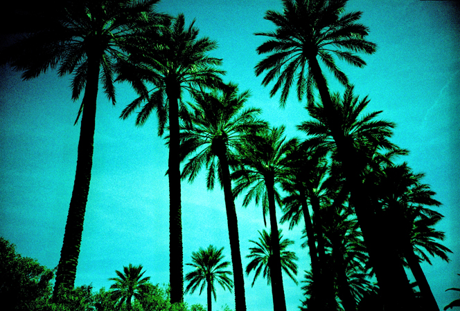 VegasLomo5_0025.jpg