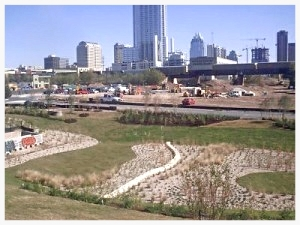 Downtown_Austin_Landscaping_02