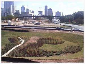 Downtown_Austin_Landscaping_03