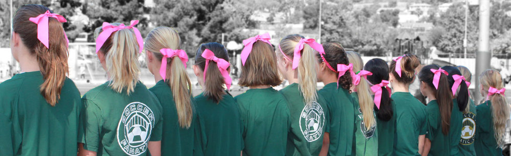 pink-hair-bows-in-line.jpg