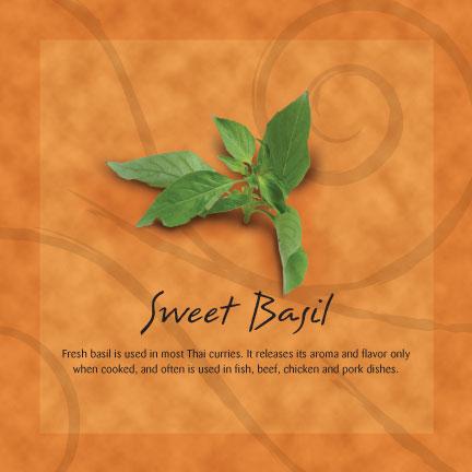 sweet-basil.jpg