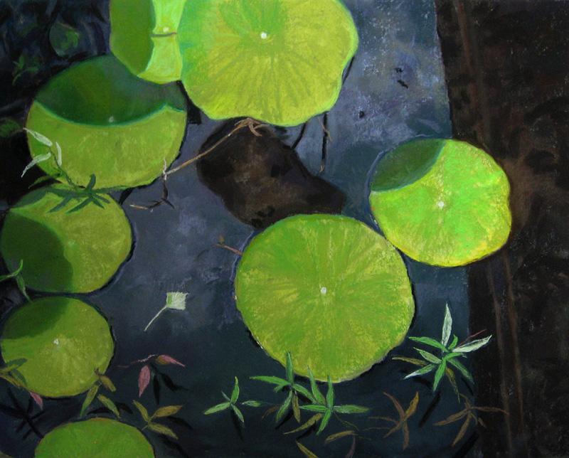 Reflections and Shadows-Maryann Goblick.JPG