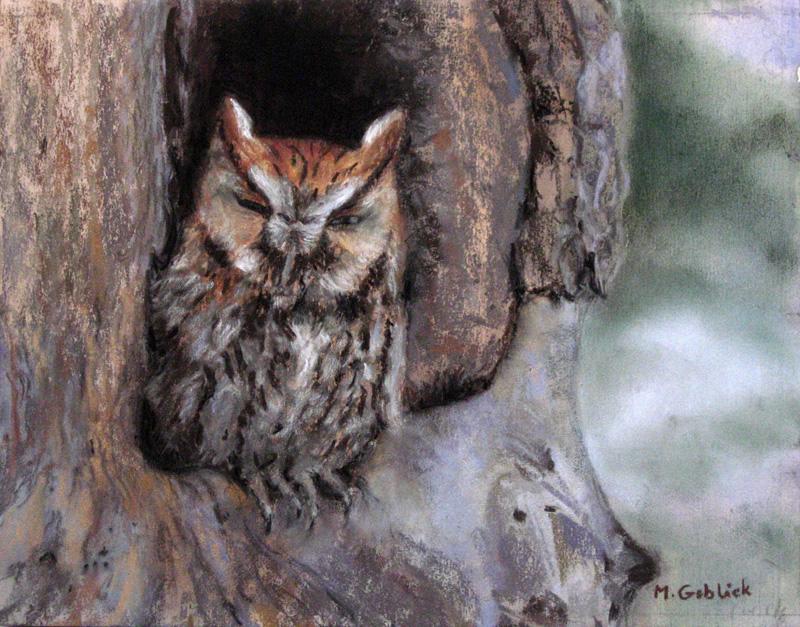 Screech Owl-Maryann Goblick.jpg