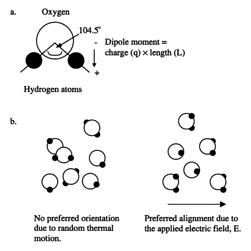 water molecules copy.jpg