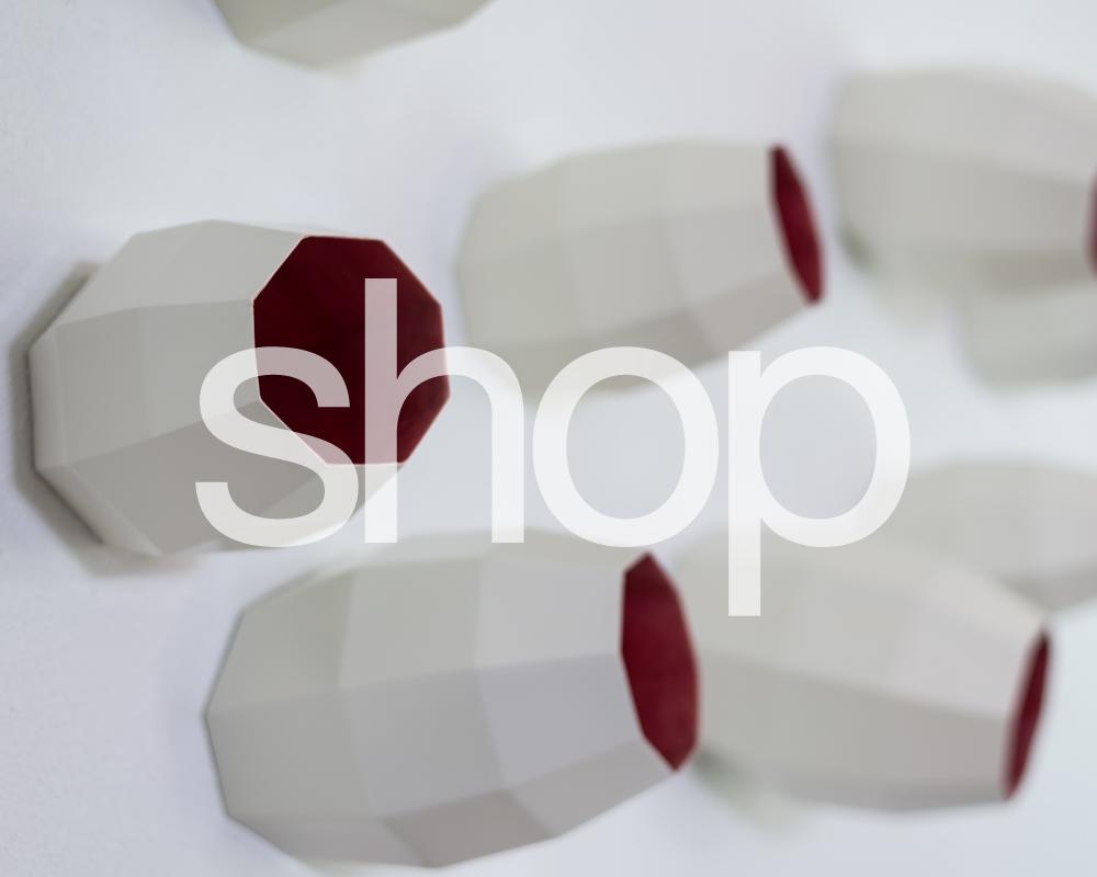 plodes studio5_shop2.jpg