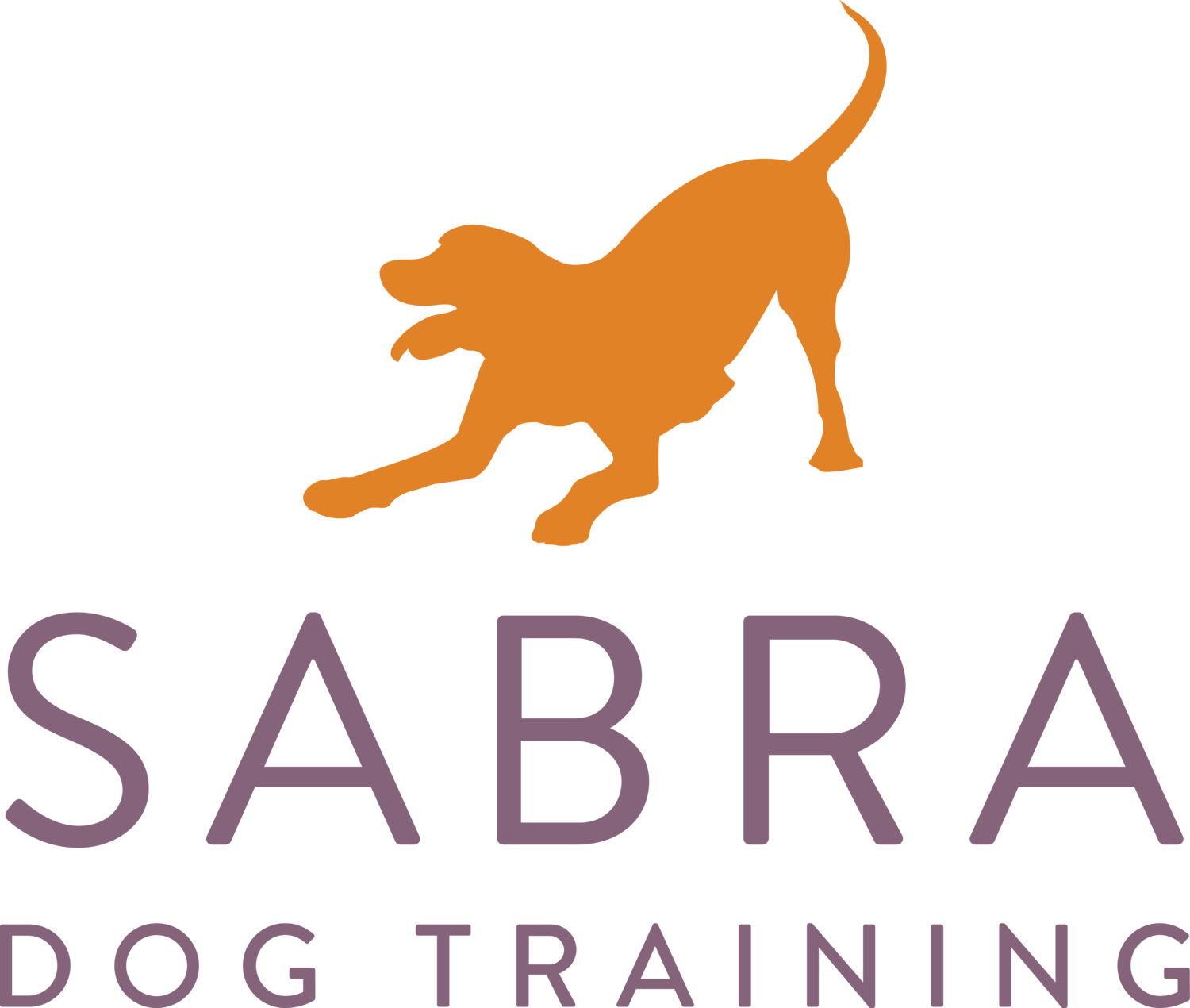 Sabra Dog Training