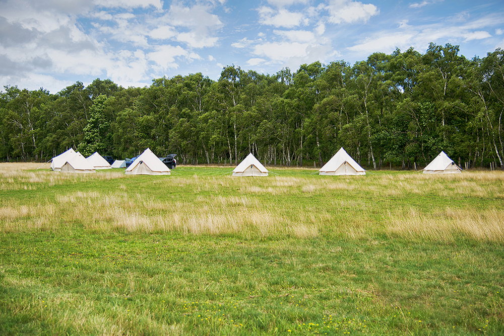 South Coast Glamping at Fiesta Fields