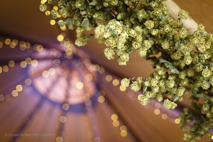fiesta-fields-tipi-wedding-3.jpg