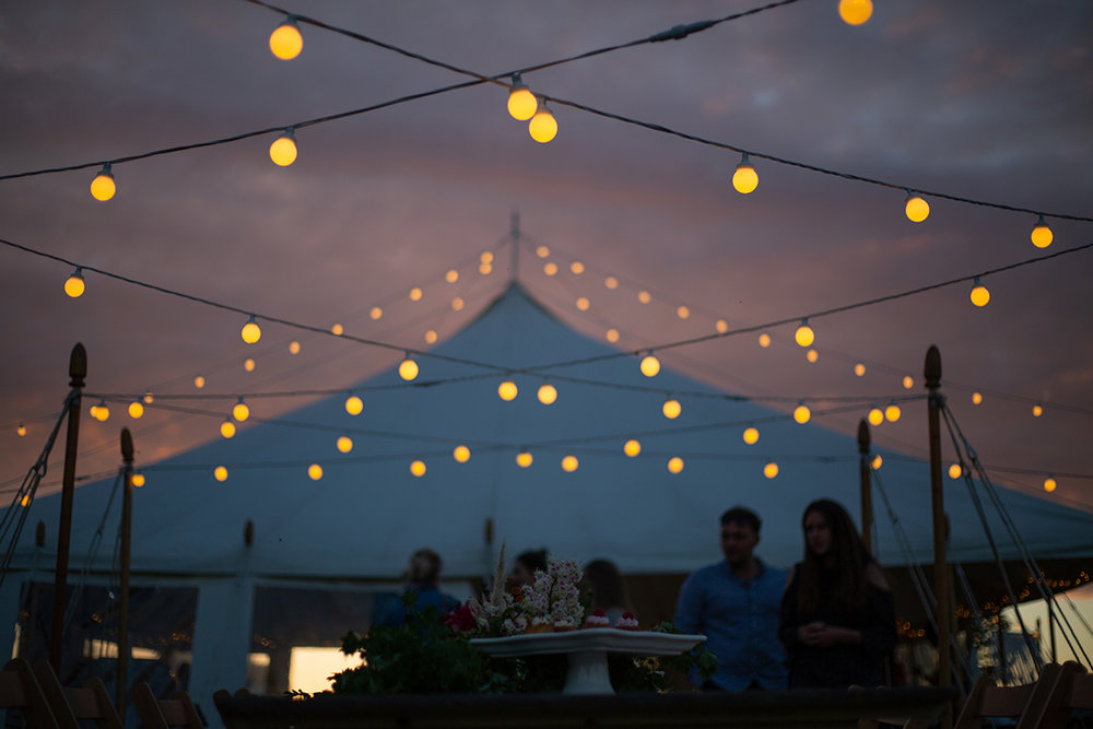 fiesta-fields-magic-hour-festoons.jpg