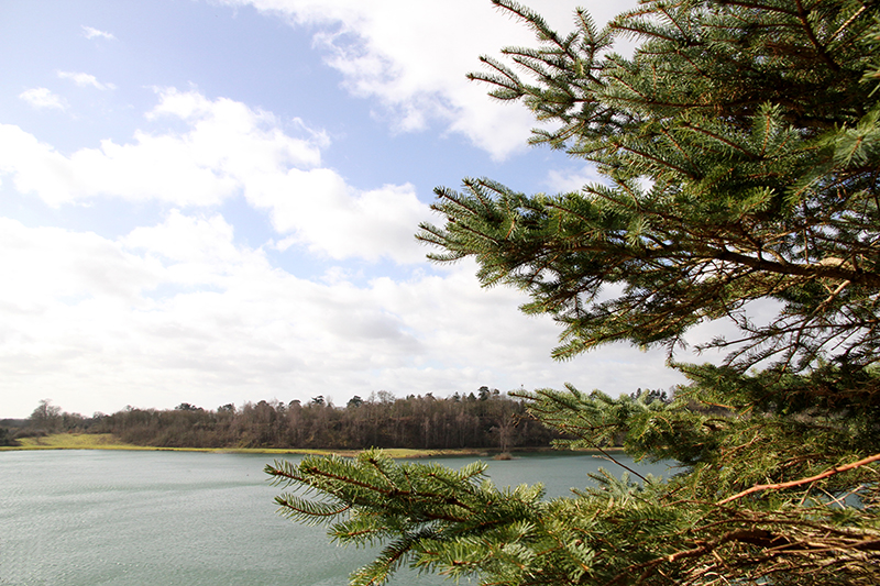 Buckland-Park-lake-fiesta-fields-lake-views.jpg