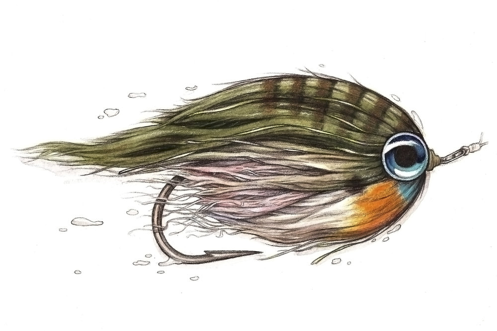Low Fat Minnow  tied by Flyfish Food | Watercolor and Pen