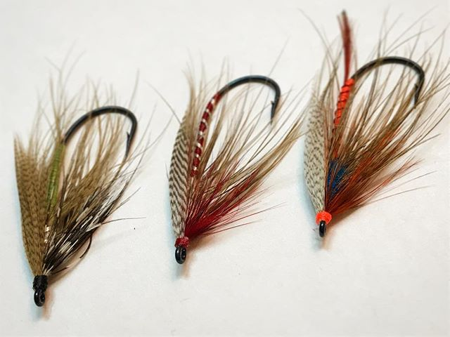First three attempts at a Lady Caroline streamer. First on the left, last on the right. Those wings are pain the ass to tie well. #ladycaroline #spey #speyfly  #steelhead #flyfishing  #flytying