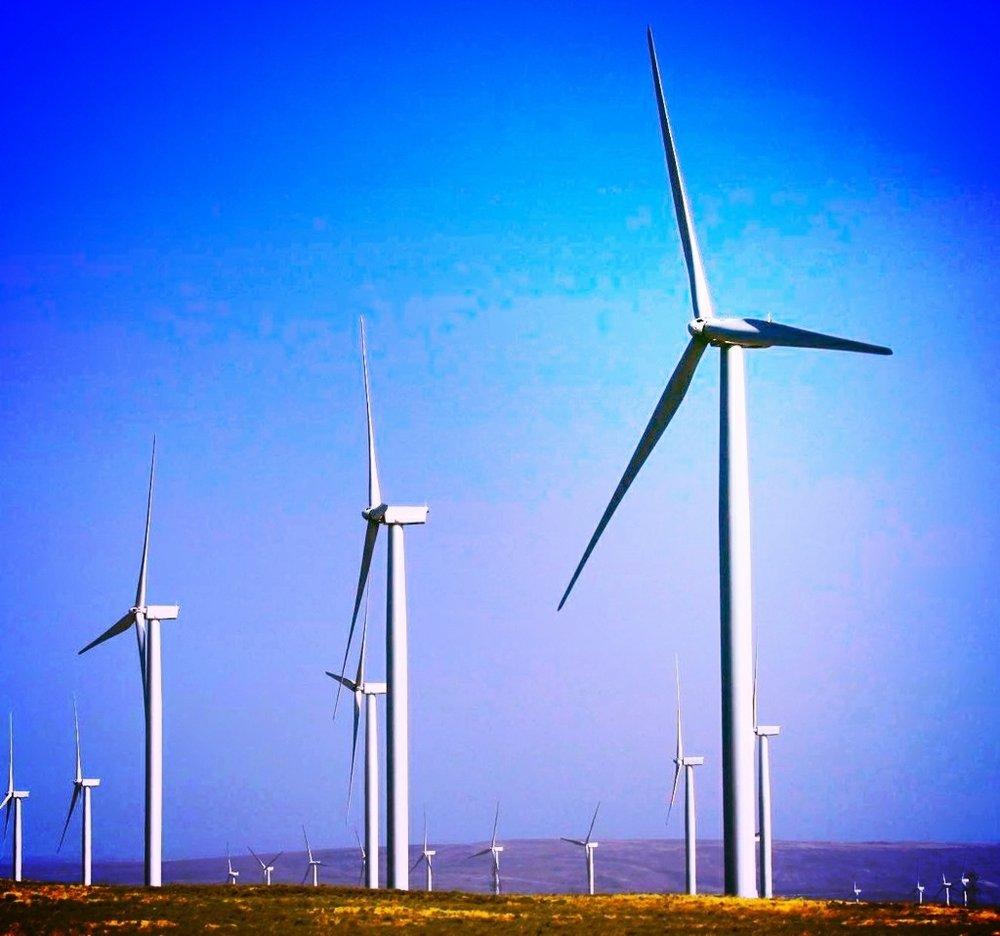 wind turbines_2.jpg