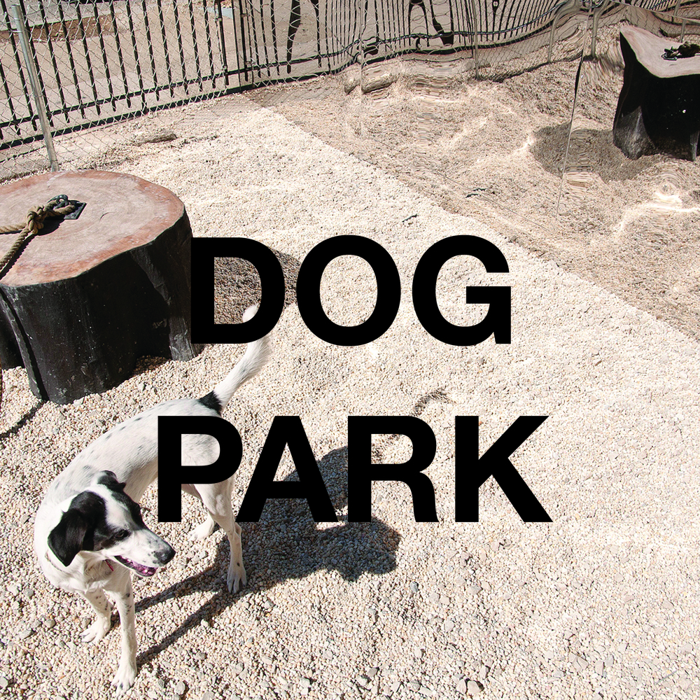 Rene Micheli_Dog Park square.jpg