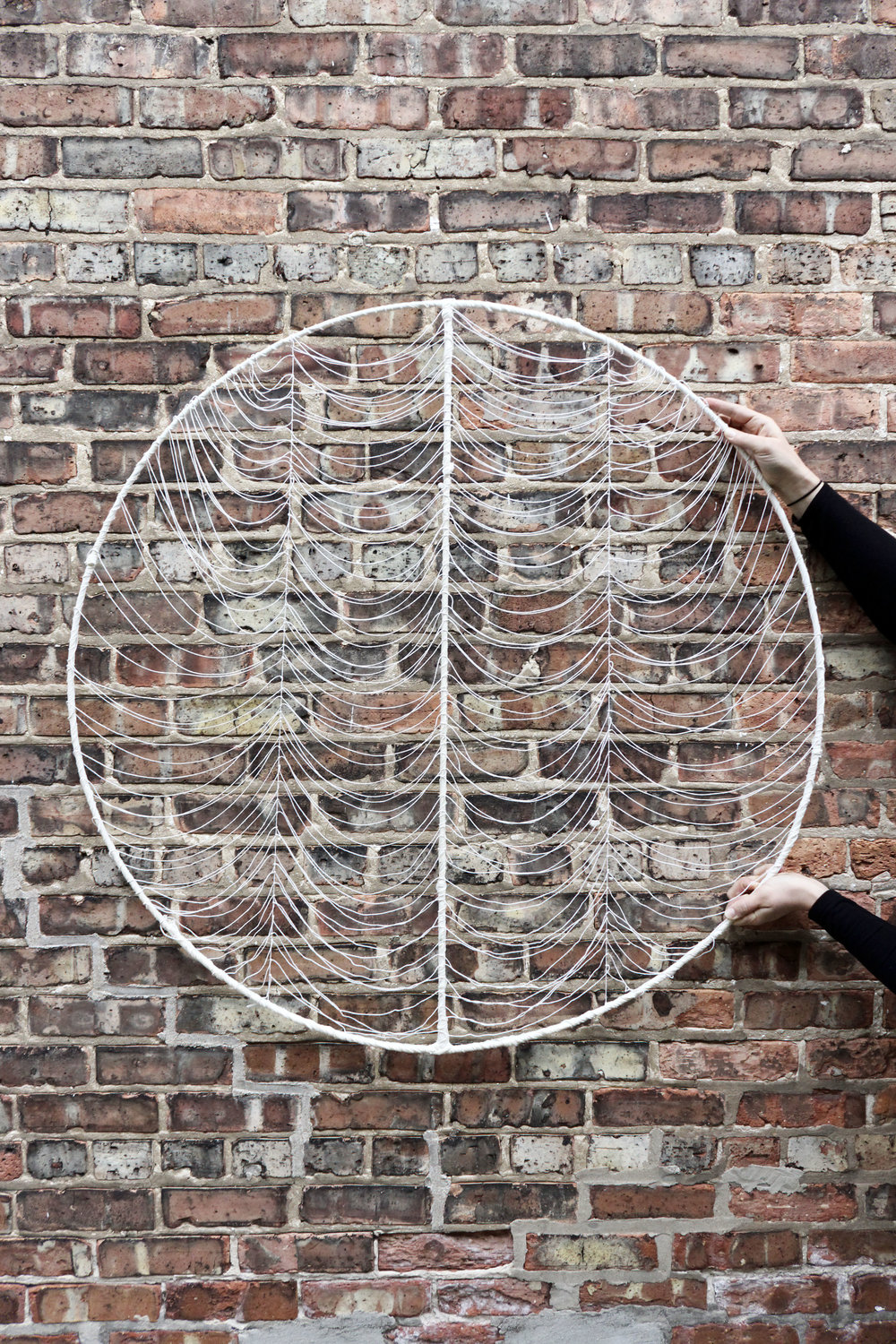 Monthly Series of Circle Art By Jamie Tubbs