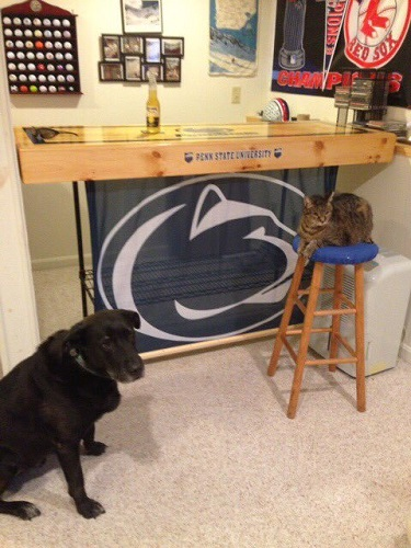 PSU Man cave with pets.jpg