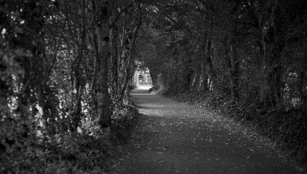 Bunratty Castle:Folk Park_001.JPG