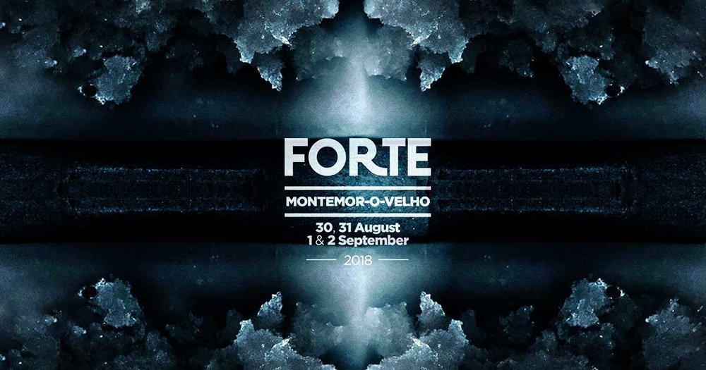 festival_forte_2018_caste_montemor-o-velho.jpg