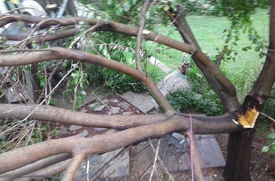 Tree service in lincoln ne storm damage.jpg