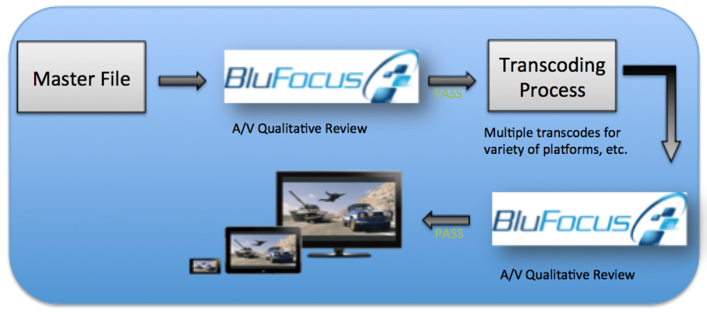 BluFocus Qualification Program for Digital Content