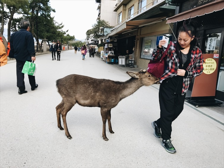 Yeah eat that shirt deer.