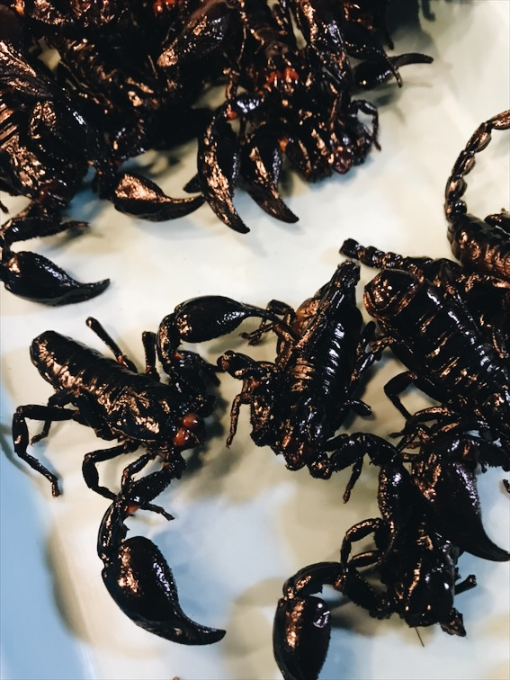 Ate a Scorpion, gross! Chef's error, I'm sure it would taste good fresh or from a better chef.