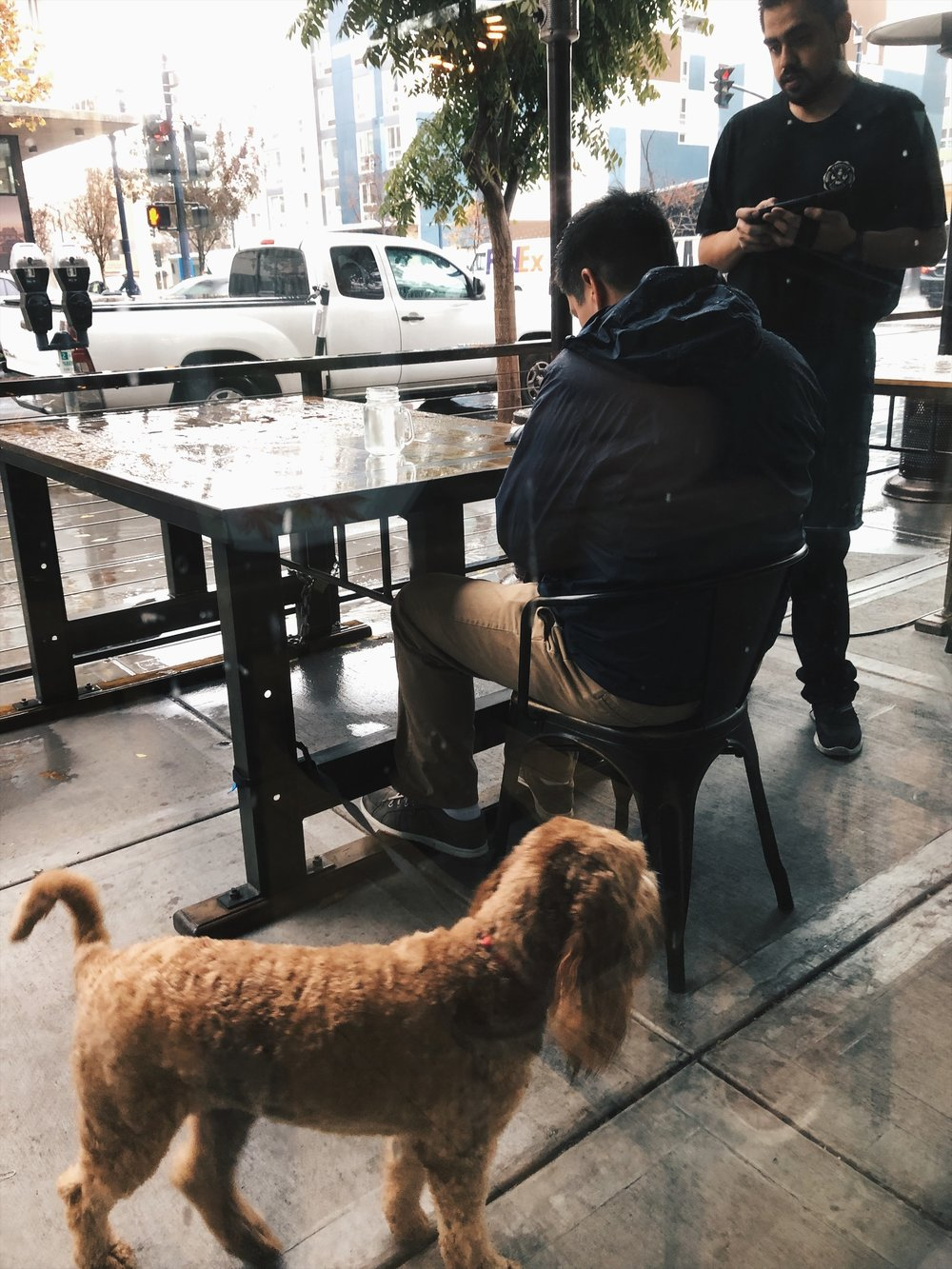 This guy sat outside with his dog, it was cold and rainy.