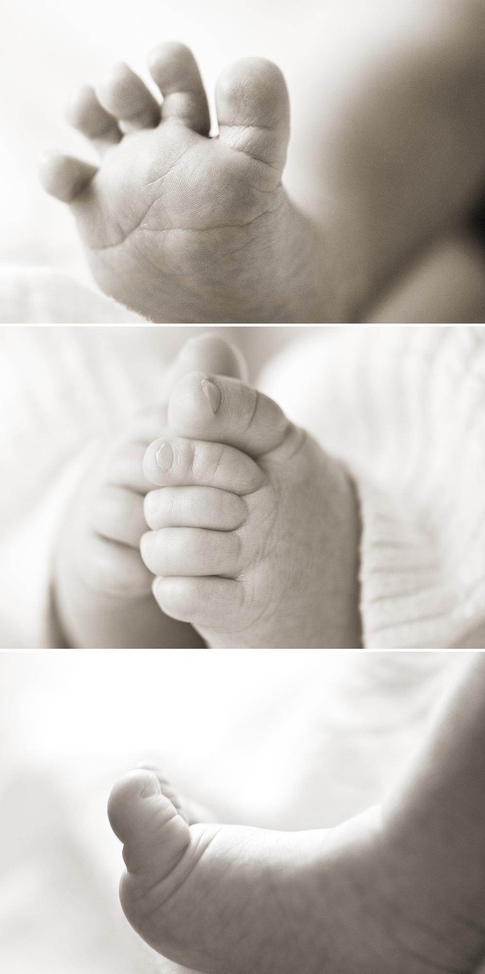 tiny feet_1.jpg
