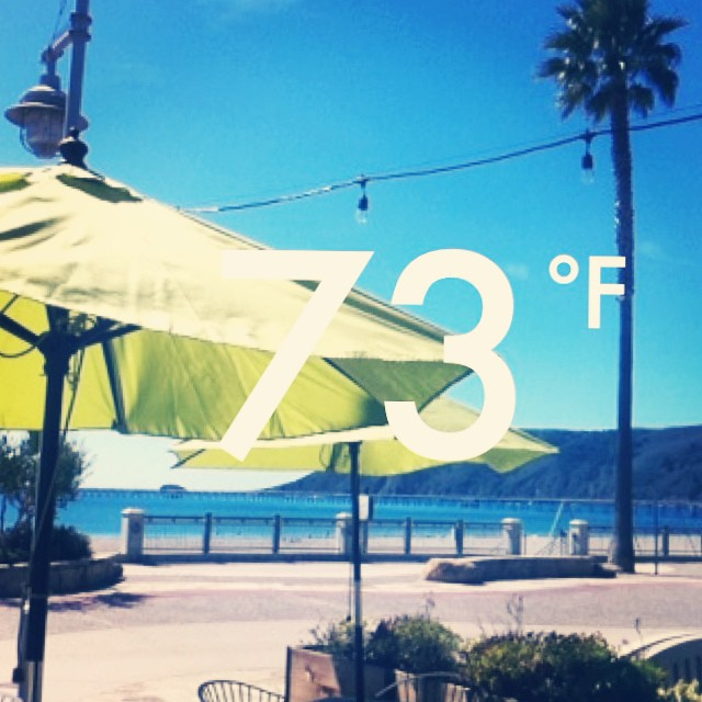 ...And only heating up! ☀️ #avilabeach #cheers