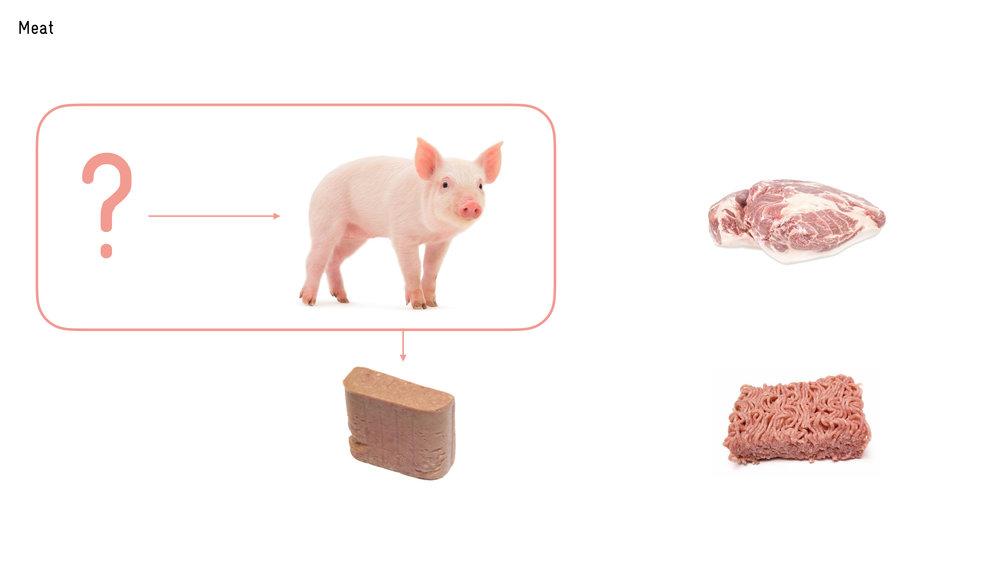food futures video slide.019.jpeg