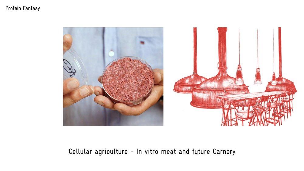 food futures video slide 2.037.jpeg