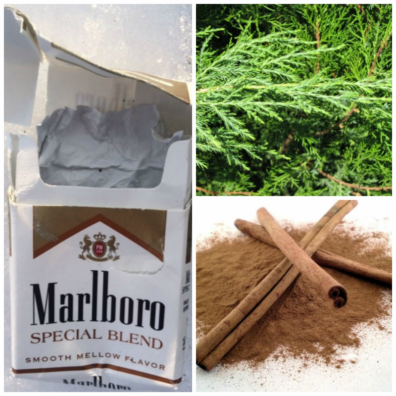 Cedar cinnamon cigarettes