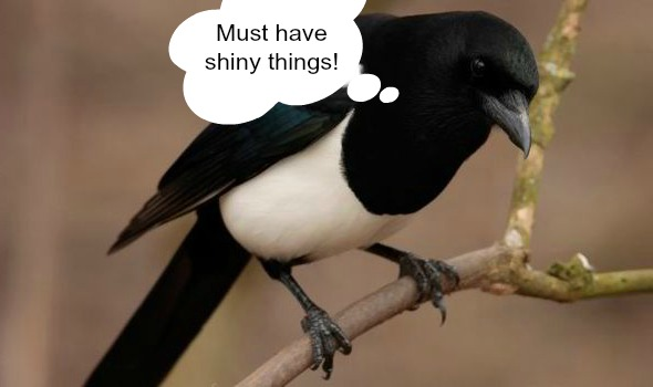 magpie shiny things